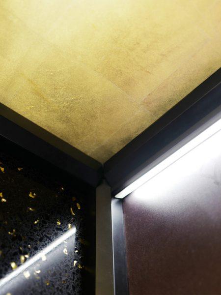 TBO Aufzug-DomusLift-Art (3)